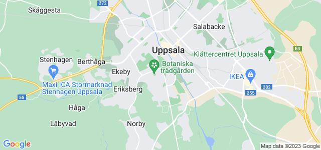 Dejting 55 Uppsala unam.net