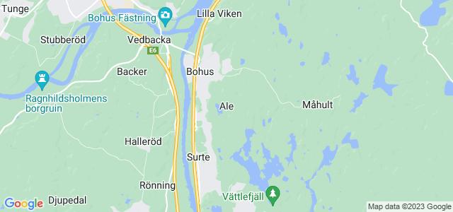 Anna Lena Johnsson, Runngsgatan 16, Ytterby | unam.net